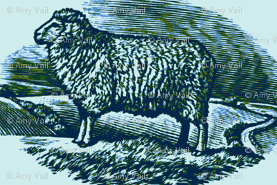 Numerable Sheep