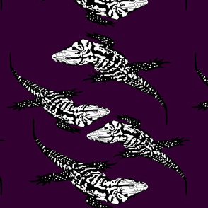 Tegu in purple
