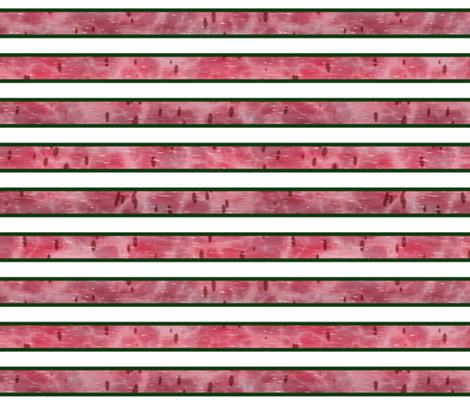 Watermelon Mania - Bordered Stripe fabric by bonnie_phantasm on Spoonflower - custom fabric