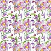 Rrorchids_purple_shop_thumb