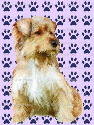 Norfolk Terrier fabric