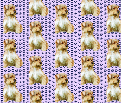 Norfolk Terrier fabric fabric by dogdaze_ on Spoonflower - custom fabric