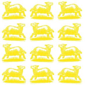 sunny_lambs