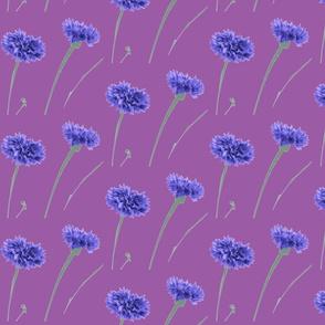 Amelia- Blue Flowers in Purple