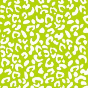 Cheetah Print Kiwi