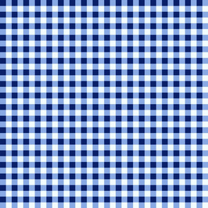 Country Prim Gingham Checks Navy