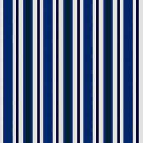 Country Prim Ticking Stripes in Navy