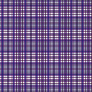 Country Plaid Purple