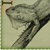 Iguana-Monkeyed