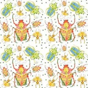 Beetles Rumble