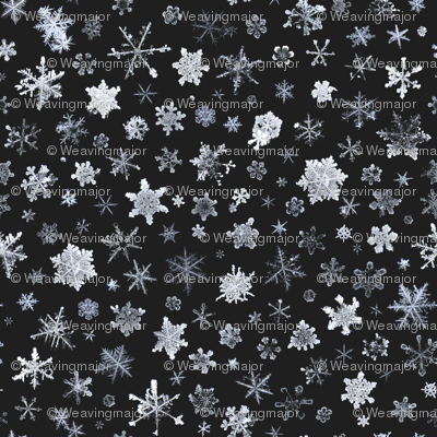 photographic snowflakes on charcoal (large snowflakes)