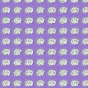 My Friend Spike Profile in Lavender