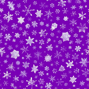 photographic snowflakes on royal purple (large snowflakes)