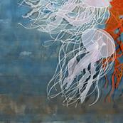Jellies Swimming through aWindow