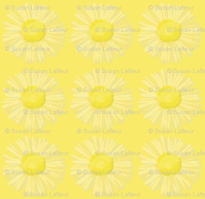 oopsie-daisy coordinate