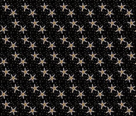 Ra.starfish_shop_preview