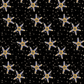 GREEK STARFISH