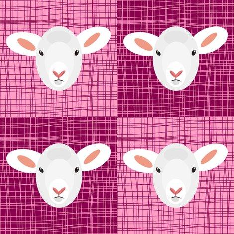 Rpink_lamb._shop_preview