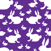 Bunny Rabbits on Purple Background