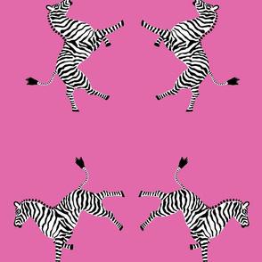 zebra_high5_pink