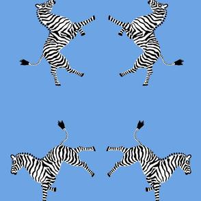 zebra_hi5_lt_blue