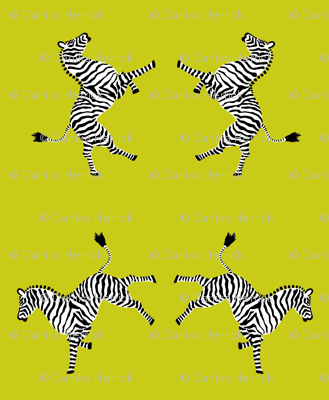 zebra_hi5_acid