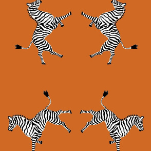 zebra_hi5_orange