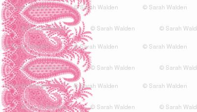 The Paisley Sublime ~ Anna Pink Border Print