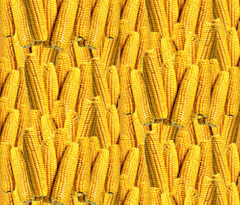 This Design Is So Corny  fabric by whimzwhirled on Spoonflower - custom fabric