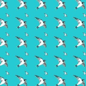 Swallow birds - grey on teal