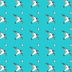 Swallow birds - grey on teal