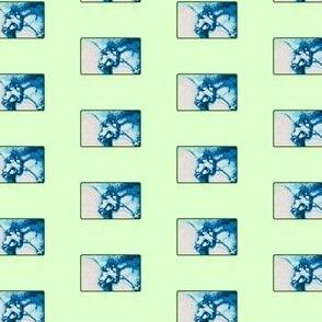 Naughty Fig Leaf Blue