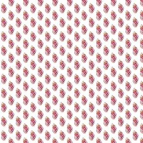 shellsfabric
