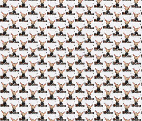 Bunny White McAvoy fabric by janshackelford on Spoonflower - custom fabric