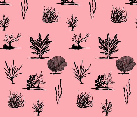 Coral Coral fabric by hollycejeffriess on Spoonflower - custom fabric