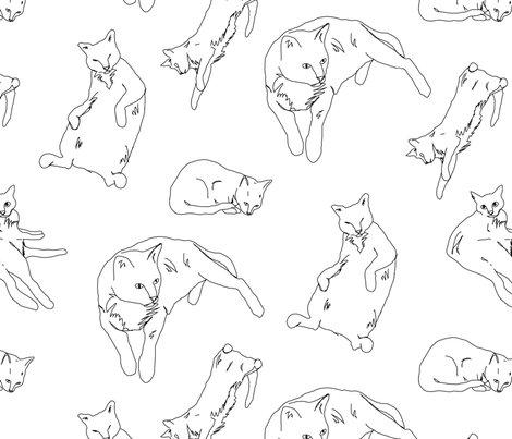 Cats_shop_preview