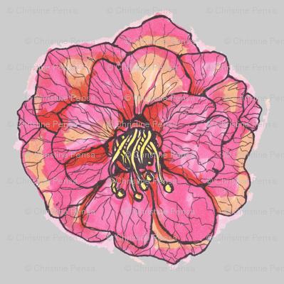 flowerwithgrey