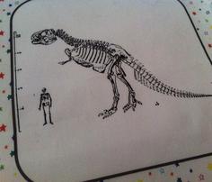 Quilt_block_stars_t_rex_skeleton_comment_308964_thumb