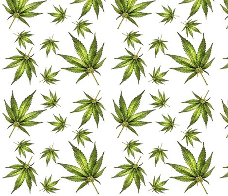 Cannabiswhite_shop_preview