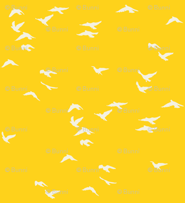 Sunshine Flock