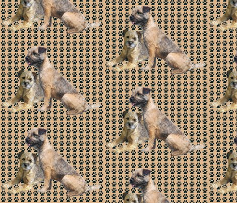 Rborder_terriers_shop_preview