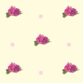 Polka Rose