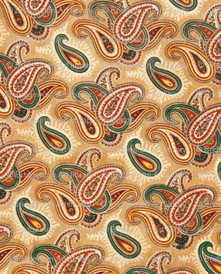 Paisley patterned lining of an abr ikat munisak