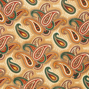 Paisley patterned lining of an abr ikat munisak