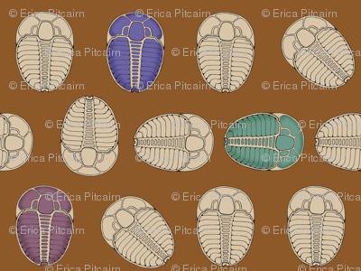 Tiny Trilobite Trot
