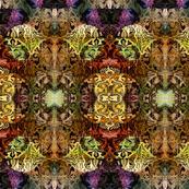 iris_design_2