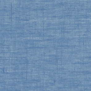 French Blue Linen