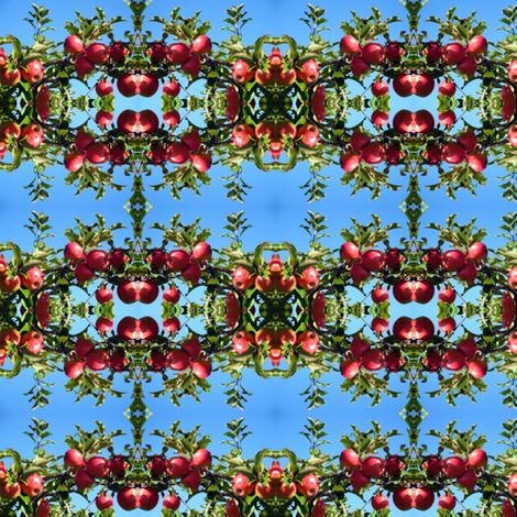 DSC00206 fabric by lindareeree on Spoonflower - custom fabric