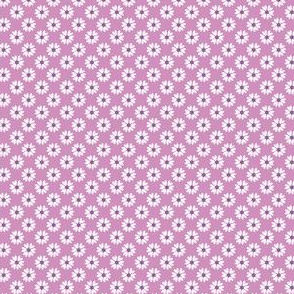 Daisy Heart purple