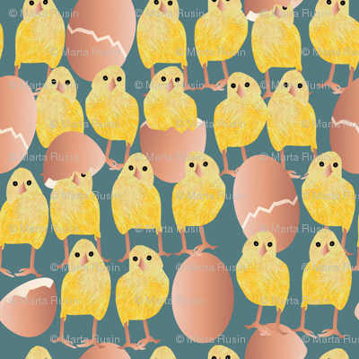 a lot of chickens